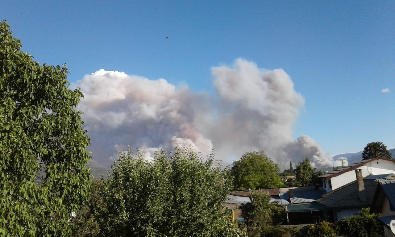Bariloche: Organismos del Estado diseñan estrategias para prevenir incendios forestales
