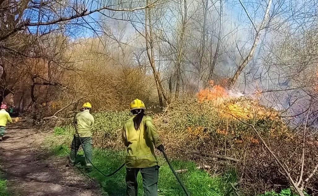 Chubut: Algunas quemas descontroladas producto del viento provocaron sendos incendios en El Hoyo