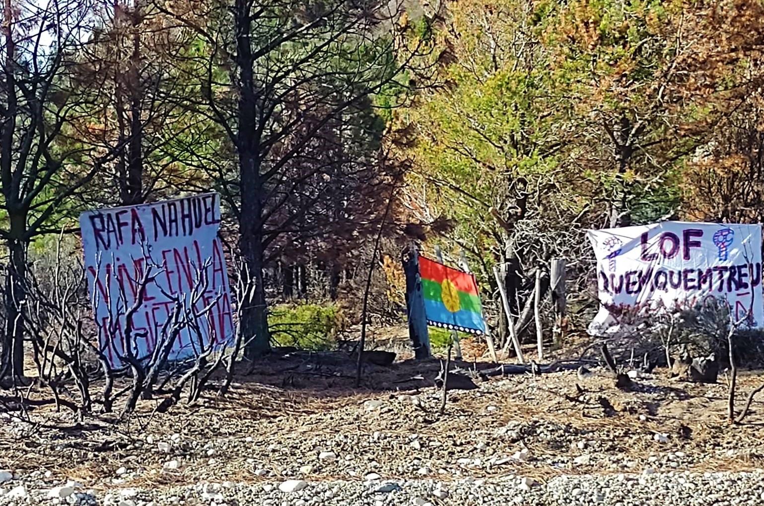 El Bolsón: Comunidad mapuche Lof Quemquemtreu ocupó tierras en cuesta del ternero