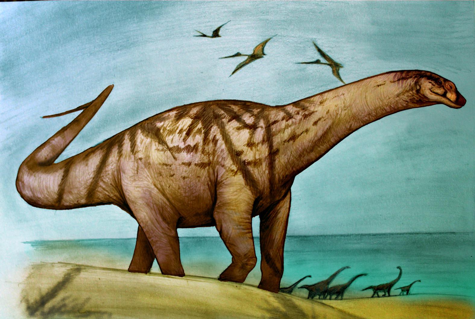 Río Negro: Descubren restos de dinosaurios de más de 70 millones de años